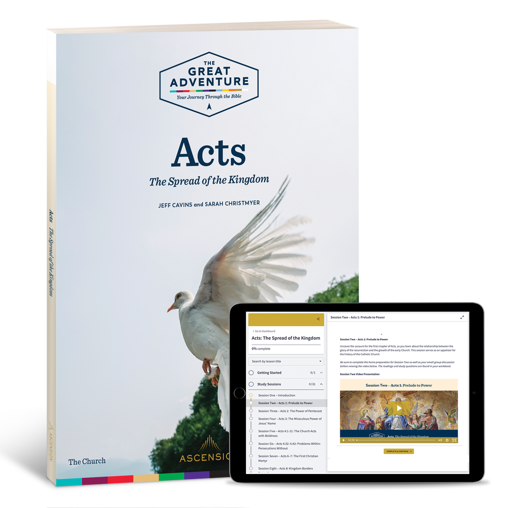 Acts: The Spread of the Kingdom, Study Set