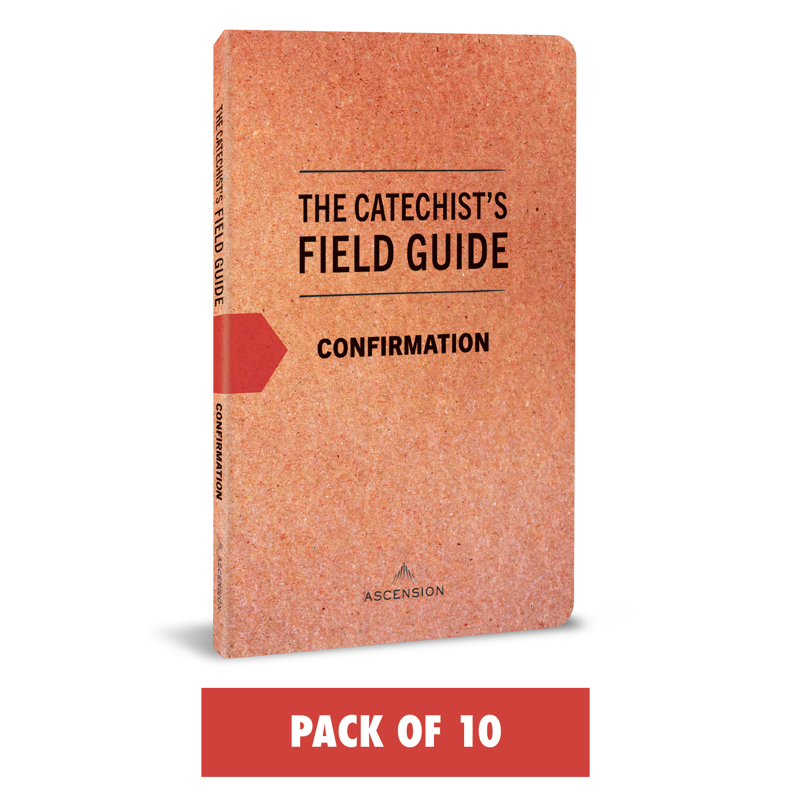 The Catechist's Field Guide to Confirmation (Pack of 10)