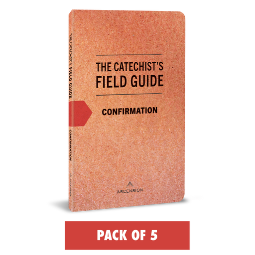 The Catechist's Field Guide to Confirmation (Pack of 5)