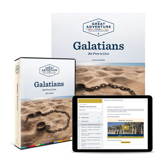 Galatians: Set Free to Live, Starter Pack