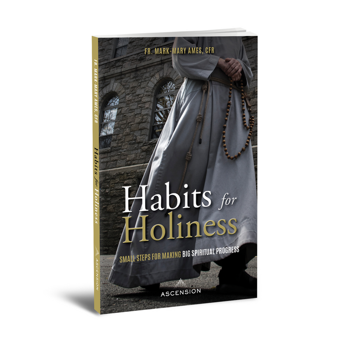 Cover for Habits for Holiness that has a CFR friar walking