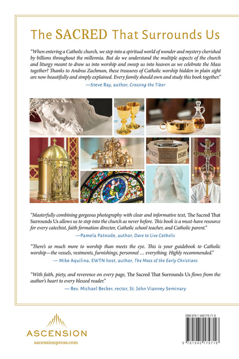 The back cover of the catholic book, The Sacred That Surrounds Us: How Everything in a Catholic Church Points to Heaven by Andrea Zachman and Ascension, featuring reviews and smaller images of Jesus, stained glass windows, an altar server holding a cross, the Eucharist and the most precious blood, and more.