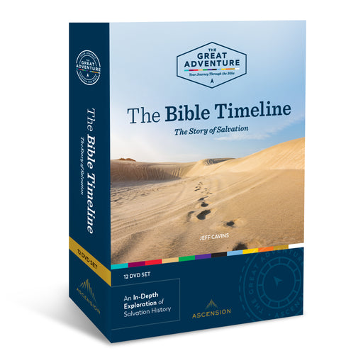 The Bible Timeline: The Story of Salvation, DVD Set