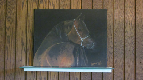 Bay Arabian Horse Painting, Original Art Work, Horse art, Acrylic Painting, 16 x 20 inches
