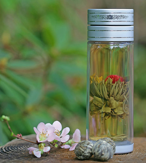 glass infuser bottle, perfect for travel with all your favorite beverages