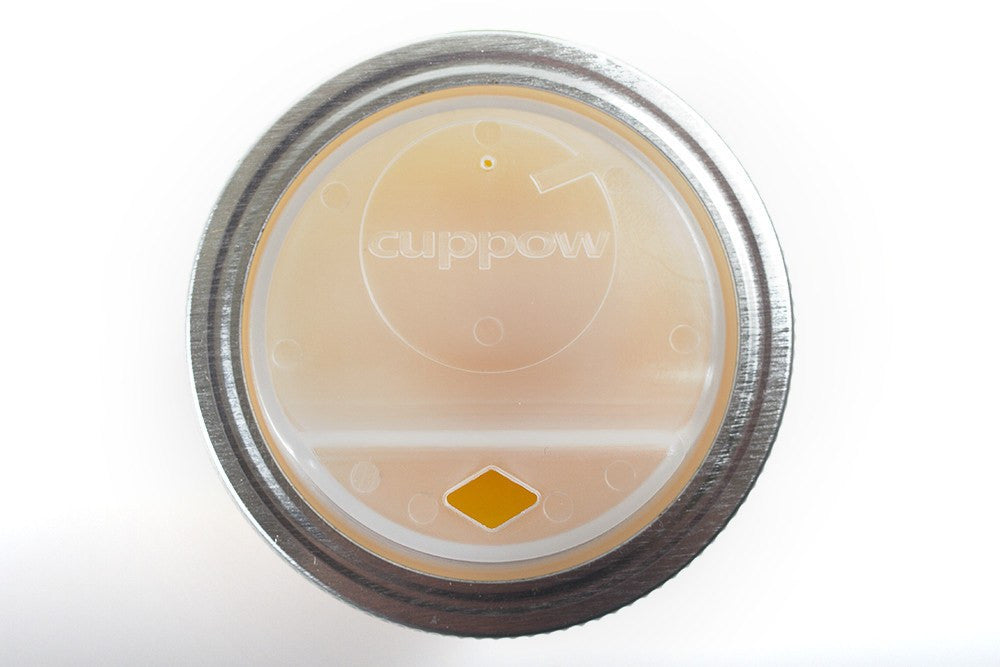 Canning Jar Sippy Lid