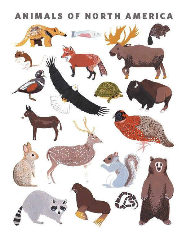 Animals of North America Print