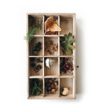 Nature Collection Tray, Rooted in Nature Set