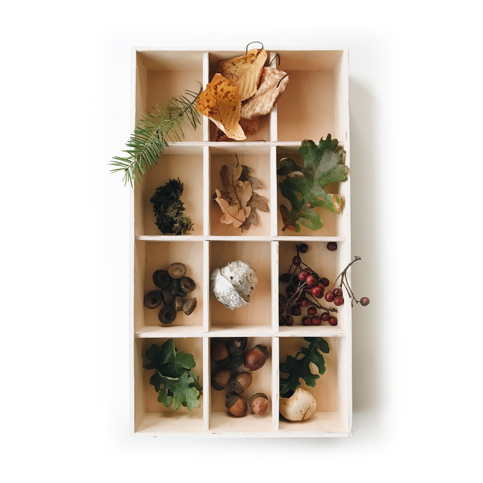 fawn&forest Nature Collection Tray - fawn&forest
