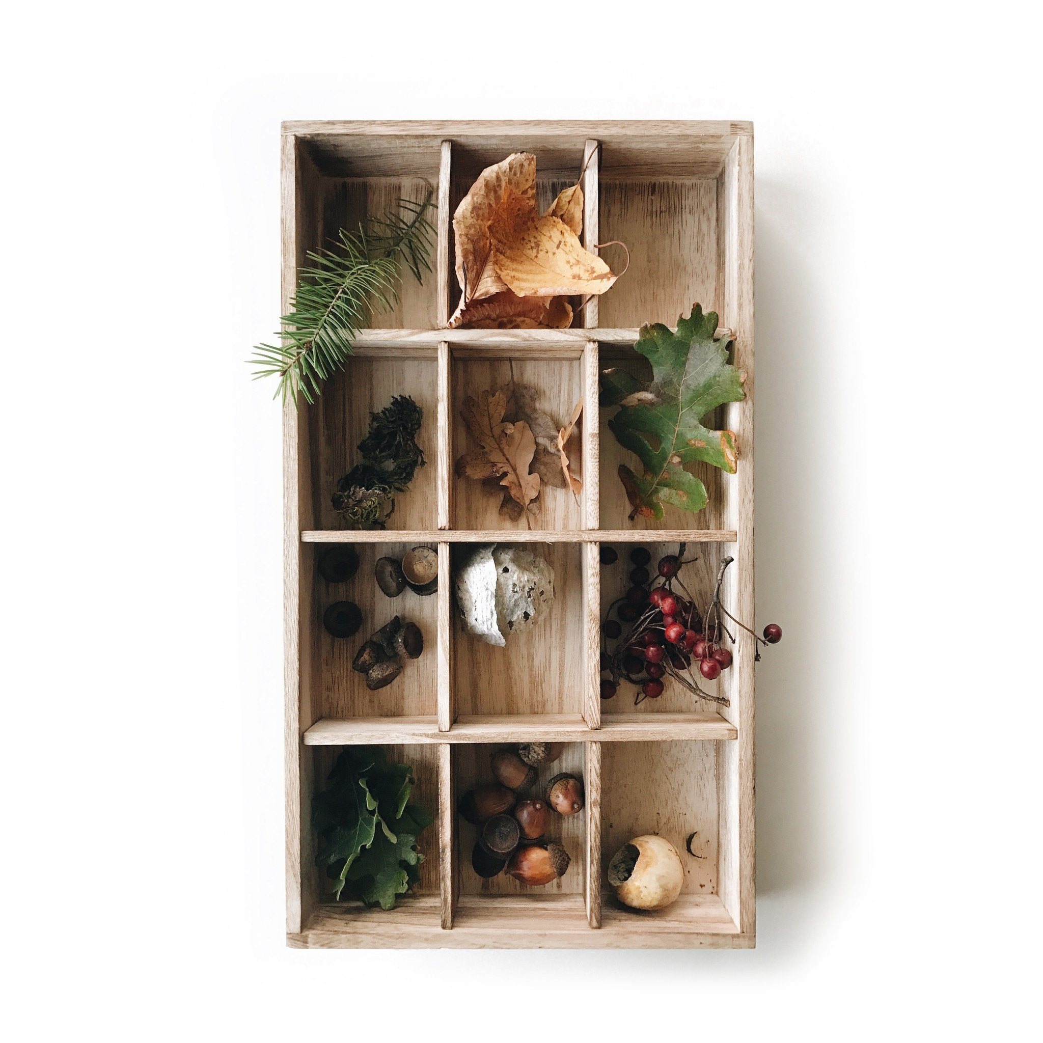 Nature Collection Tray