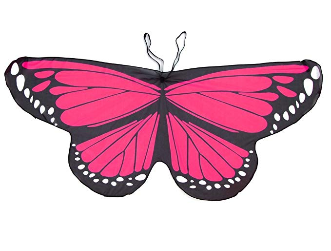 Crimson Rose Butterfly Wings