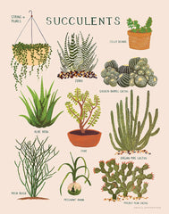 fawn&forest Succulents Print - fawn&forest