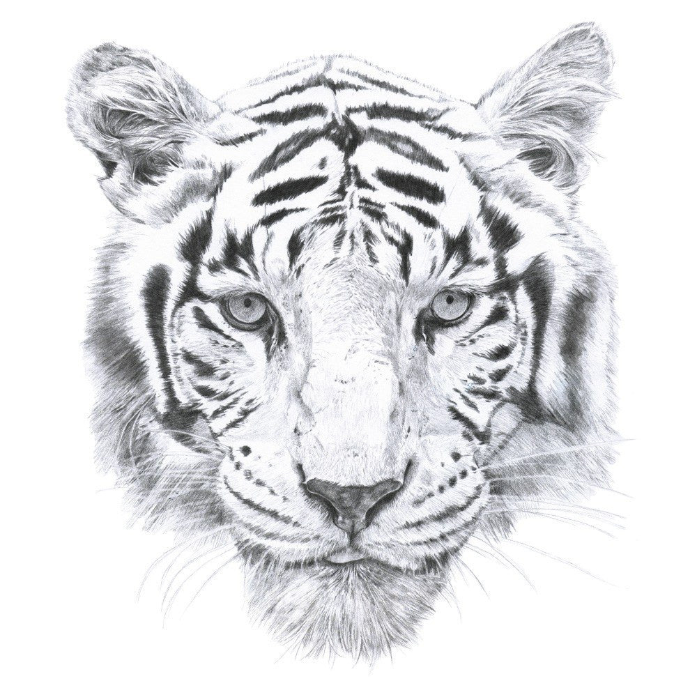 Tiger Face Wall Decal