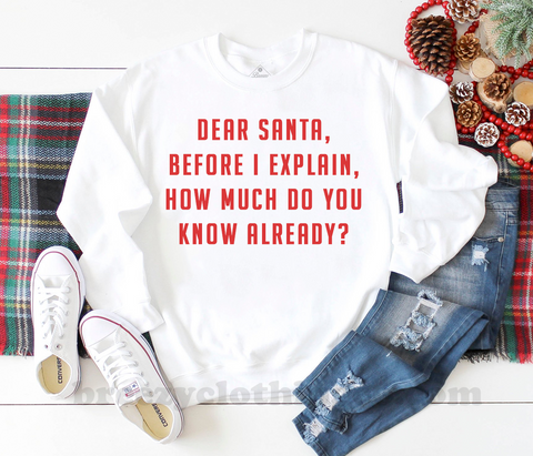 Dear Santa before i explain, how much do you know already? white unisex LIMITED EDITION  crewneck