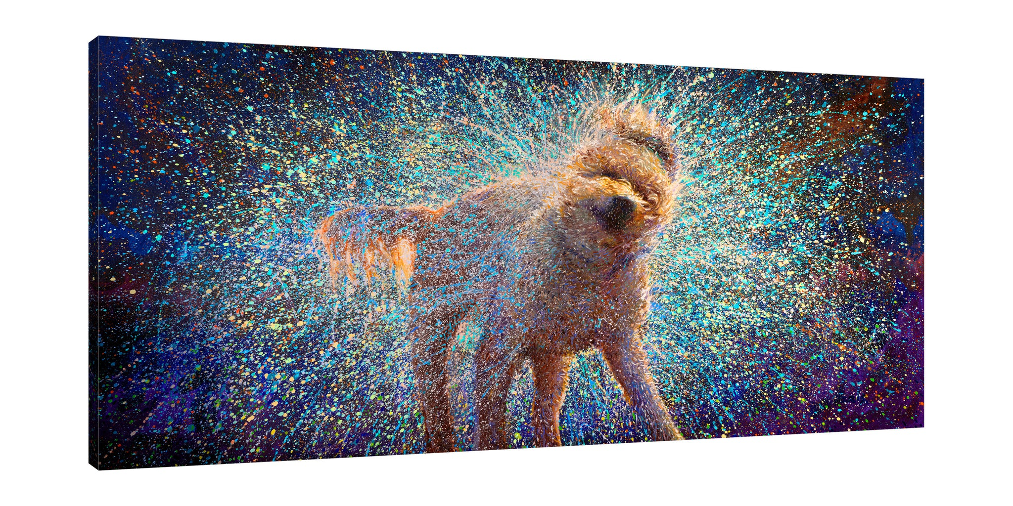 Iris-Scott,Modern & Contemporary,Animals,Impressionism,surreal,finger paint,animal,dog,shaking dog,wet,splatter,