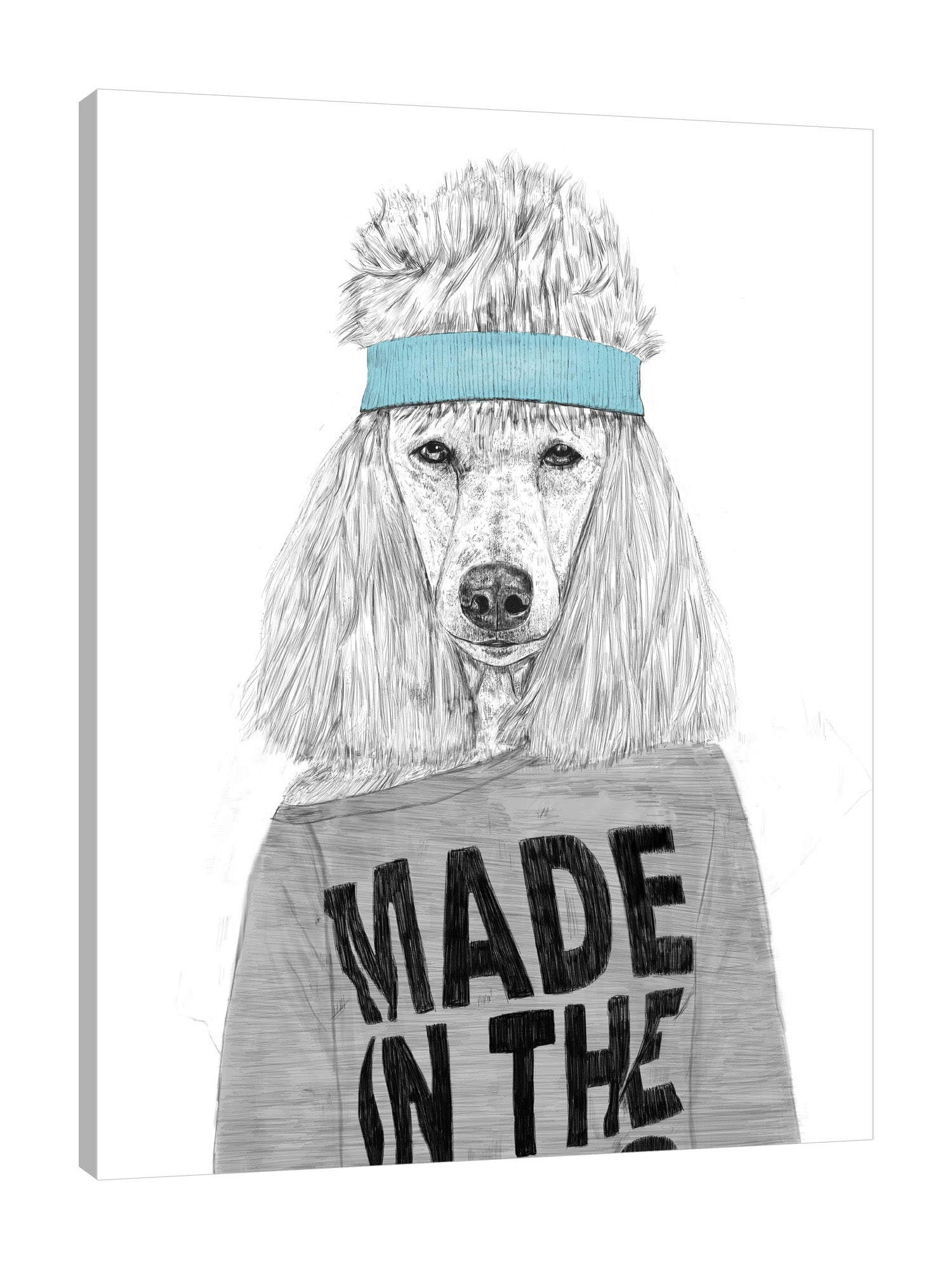 Balazs-Solti,Modern & Contemporary,Animals,animal,animals,dog,dog,bitch,poodles,poodle,headband,words,words and phrases,black and white,Red,Charcoal Gray,Salmon Pink,Gray,White