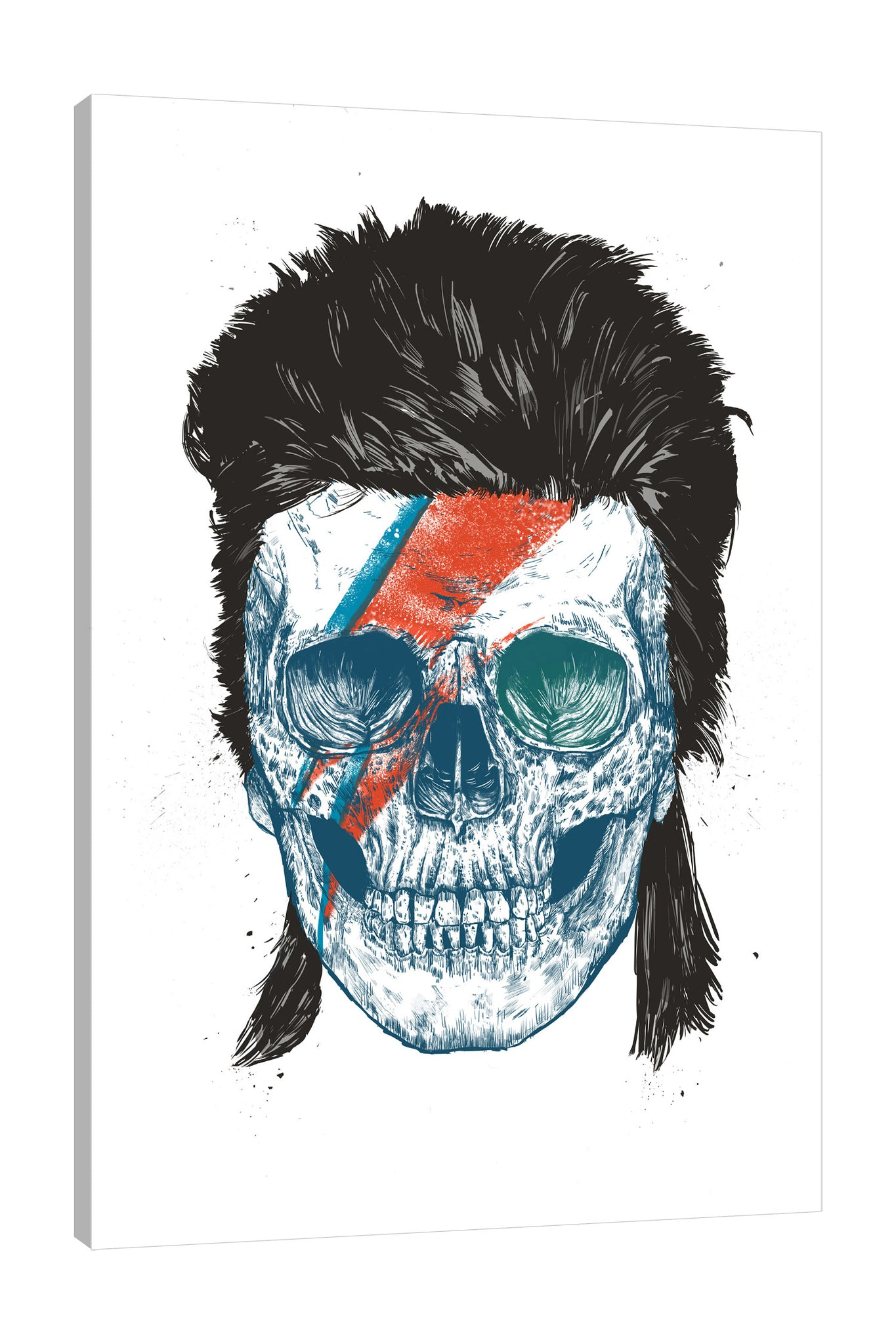 Balazs-Solti,Modern & Contemporary,People,Entertainment,skulls,skull,bones,bone,bowie,bowies skull,hair,red,blue,people,Red,Mist Gray,Black,White