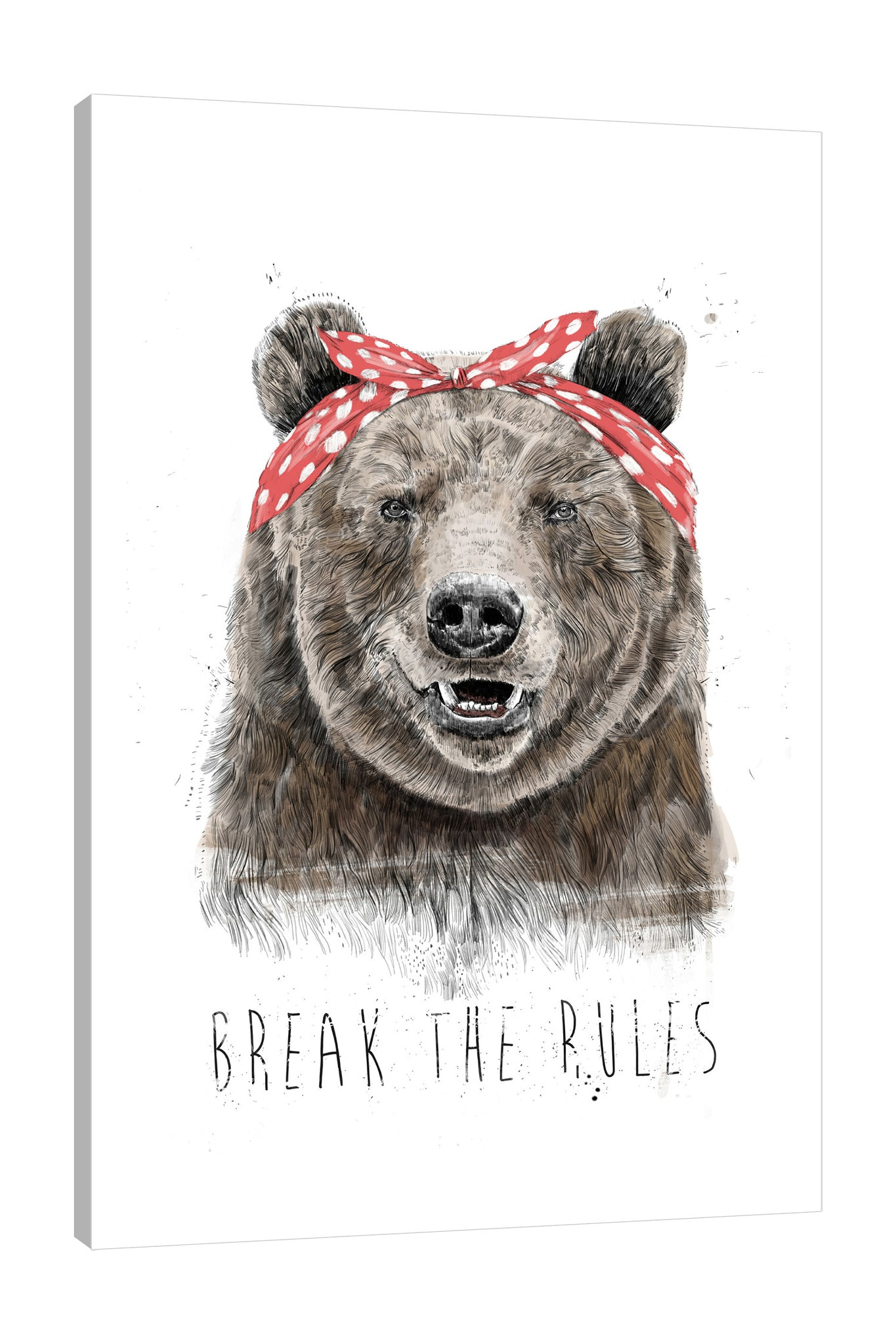 Balazs-Solti,Modern & Contemporary,Animals,Entertainment,animals,animal,bears,bear,words and phrases,words,break the rules,rules,break,headband,polka dots,dots,polka dot,Red,Gray,Charcoal Gray,White