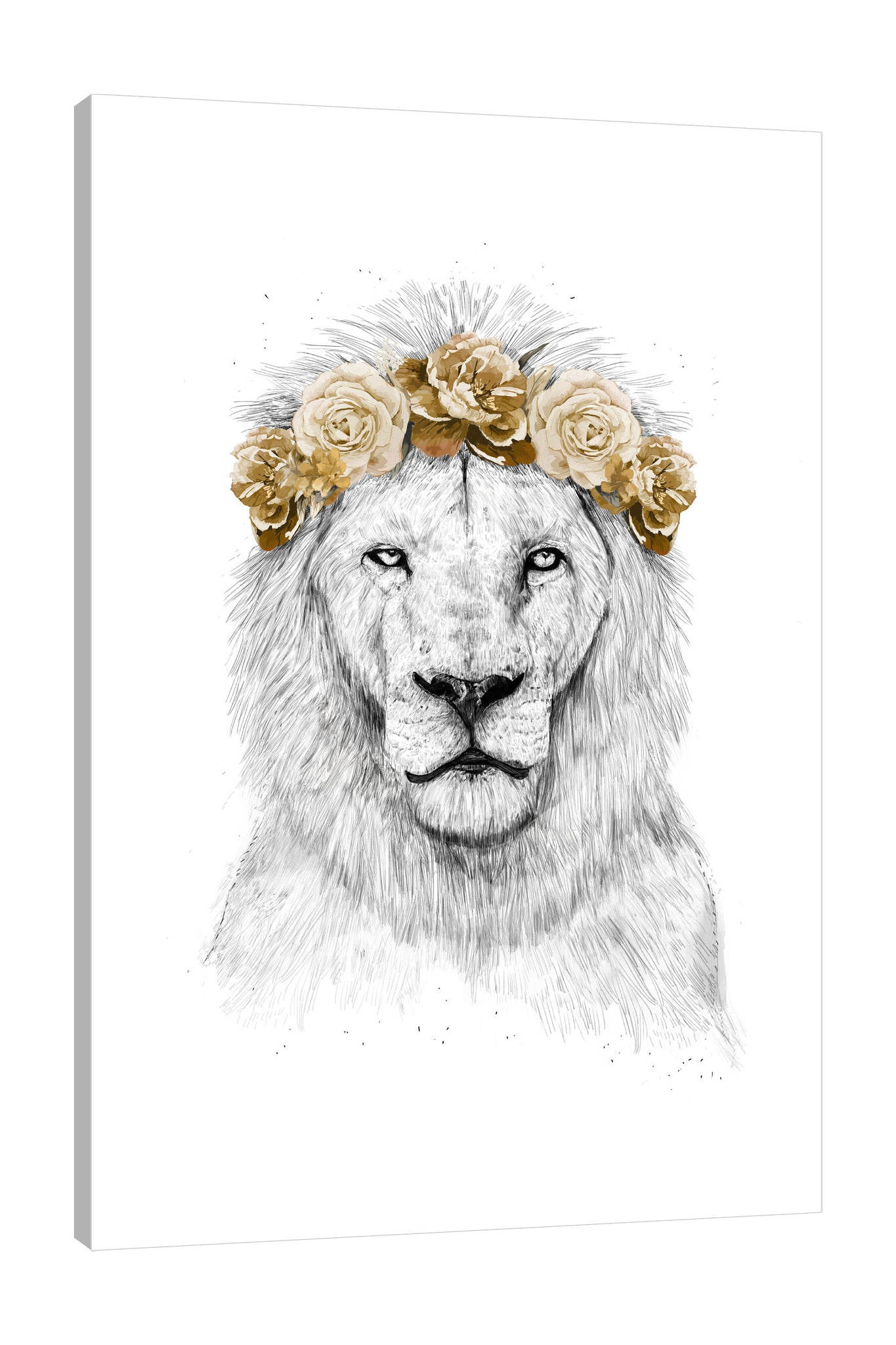 Balazs-Solti,Modern & Contemporary,Animals,Floral & Botanical,animals,animal,lion,lions,floral,florals,flowers,flower,gold,yellow,Salmon Pink,Blue,Red,White