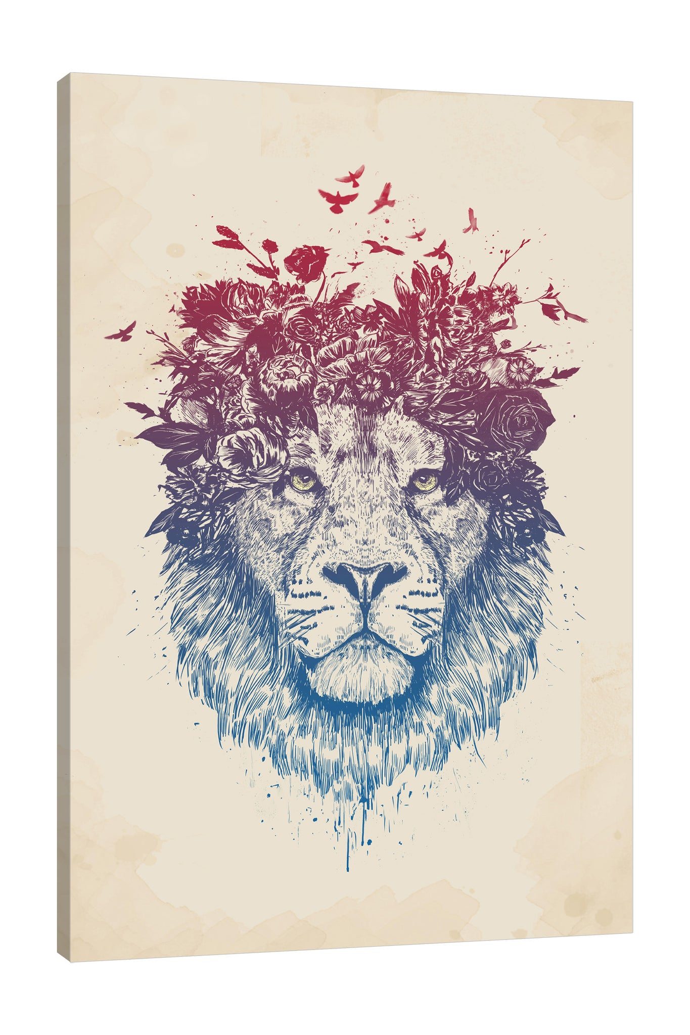 Balazs-Solti,Modern & Contemporary,Animals,Floral & Botanical,animals,animal,lion,lions,floral,florals,flowers,flower,birds,bird,paint drips,paint drip,Mist Gray,White,Gray,Lime Green,Purple,Charcoal Gray