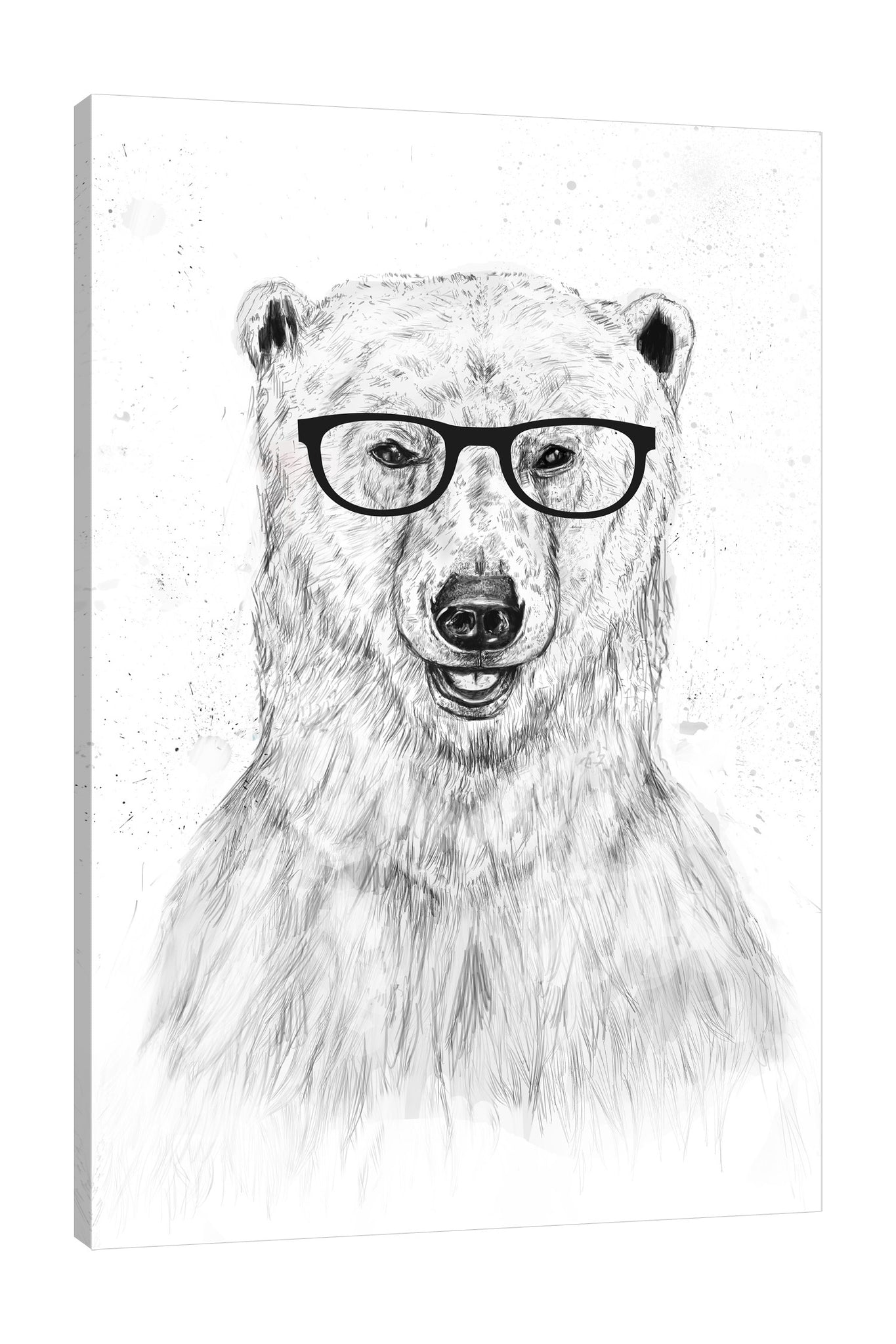 Balazs-Solti,Modern & Contemporary,Animals,Entertainment,animals,animal,eyeglass,eyeglasses,stroke,strokes,bears,bear,Purple,Mist Gray,Charcoal Gray,Gray,Coral Pink,White