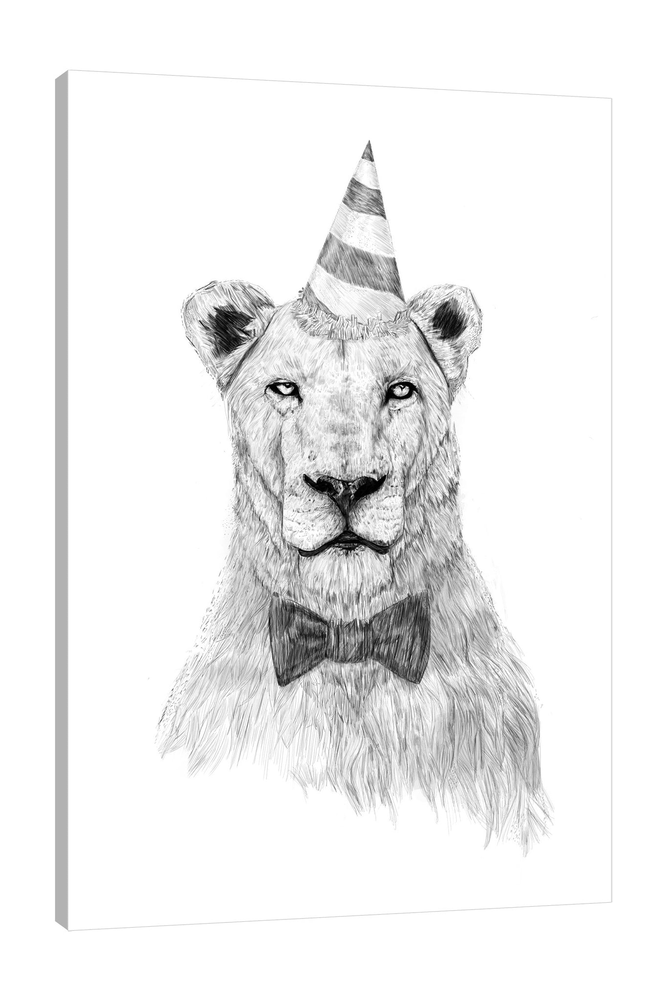 Balazs-Solti,Modern & Contemporary,Animals,Entertainment,animals,animal,lion,lions,bow,bows,party hat,party hats,parties,lines,strokes,line,stroke,black and white,Mint Blue,Red,White