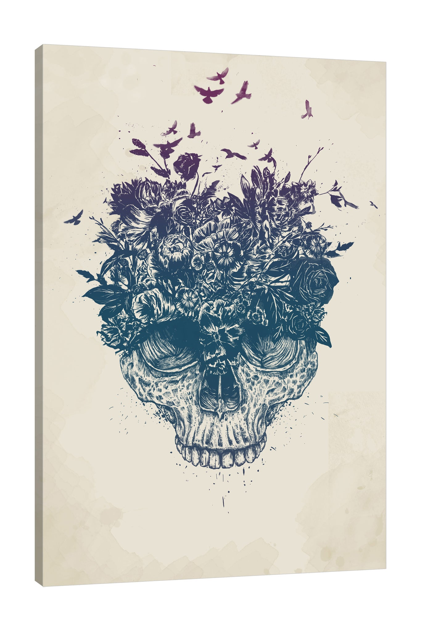 Balazs-Solti,Modern & Contemporary,Animals,Floral & Botanical,People,bones,bone,skulls,skull,florals,floral,flower,flowers,birds,bird,animals,animal,Mist Gray,White,Gray,Black,Teal Blue,Lime Green,Purple,Charcoal Gray