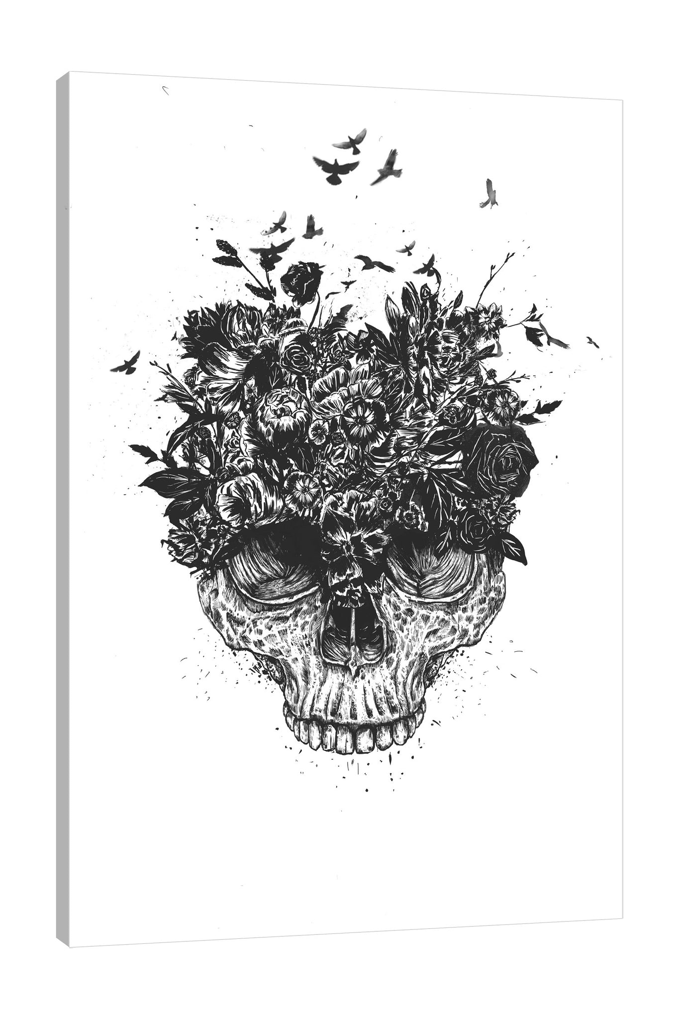 Balazs-Solti,Modern & Contemporary,Animals,Floral & Botanical,People,animals,animal,birds,bird,bones,bone,skulls,skull,floral,florals,flower,flowers,black and white,Tan Orange,Charcoal Gray,Red,White