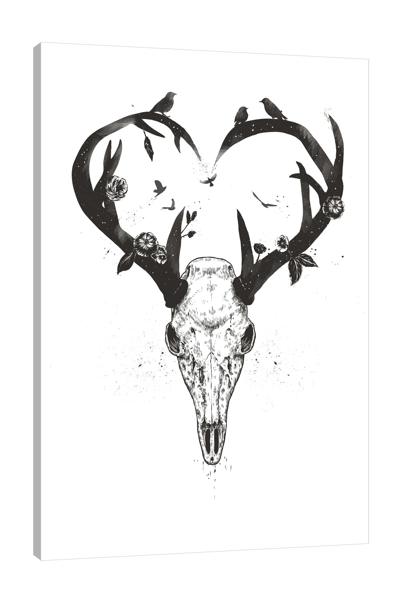 Balazs-Solti,Modern & Contemporary,Animals,Floral & Botanical,animals,animal,skull,skulls,horns,horn,florals,floral,flowers,flower,birds,bird,heart,hearts,black and white,Mist Gray,Tan Orange,Yellow,Tan White