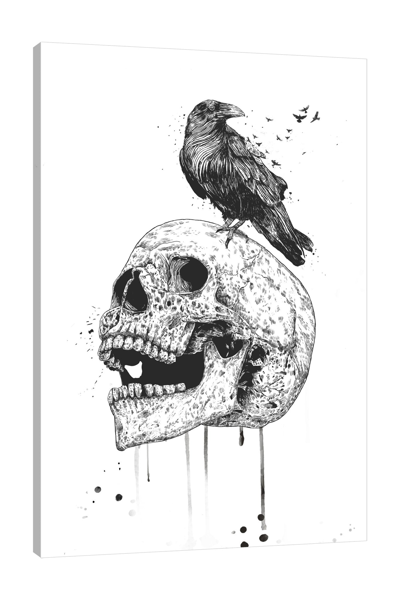 Balazs-Solti,Modern & Contemporary,Animals,People,bones,bone,skulls,skull,crow,crows,birds,bird,animals,animal,paint drips,paint drip,drips,drip,spots,spot,black and white,Charcoal Gray,Tan Orange,White,Gray