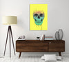 Balazs-Solti,Modern & Contemporary,People,skulls,skull,bones,bone,paint drips,paint drip,eyeglass,eyeglasses,yellow,spots,blue,pink,Salmon Pink,White,Charcoal Gray,Gray,Blue,Mist Gray,Green