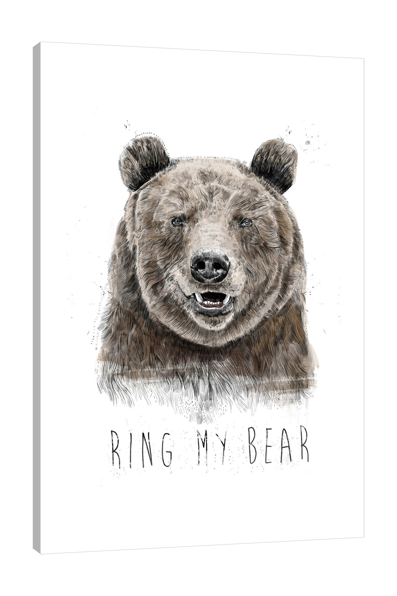 Balazs-Solti,Modern & Contemporary,Animals,animals,animal,bear,bears,words,brown,my bear,ring my bear,white,brown,Pale Green,White,Gray