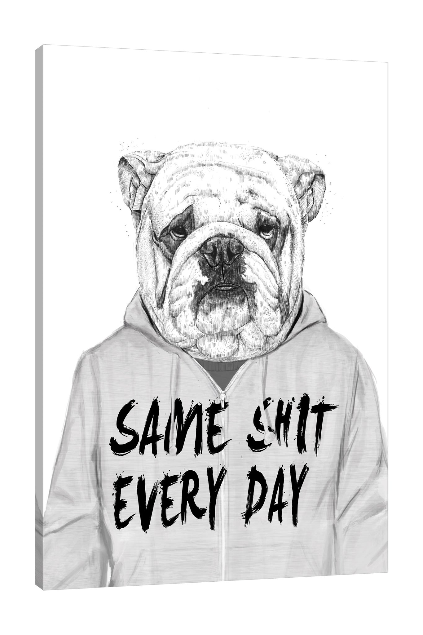 Balazs-Solti,Modern & Contemporary,Animals,animals,animal,dogs,dog,words,word,same shit,same shit every day,jacket,gray,Red,Gray,White