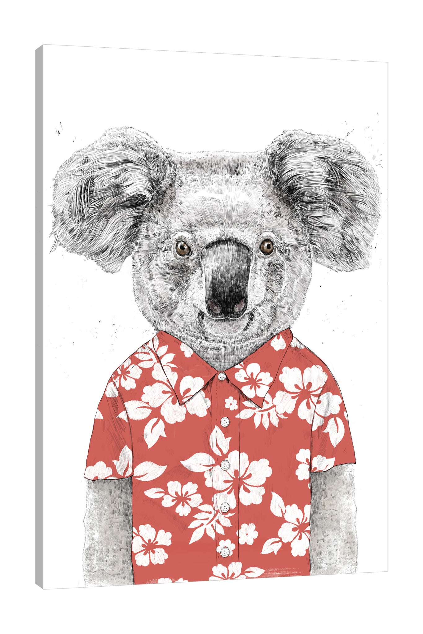 Balazs-Solti,Modern & Contemporary,Fashion,Floral & Botanical,Animals,animals,animal,koala,koalas,floral,florals,flower,flowers,red,polo,Red,Mist Gray,Gray