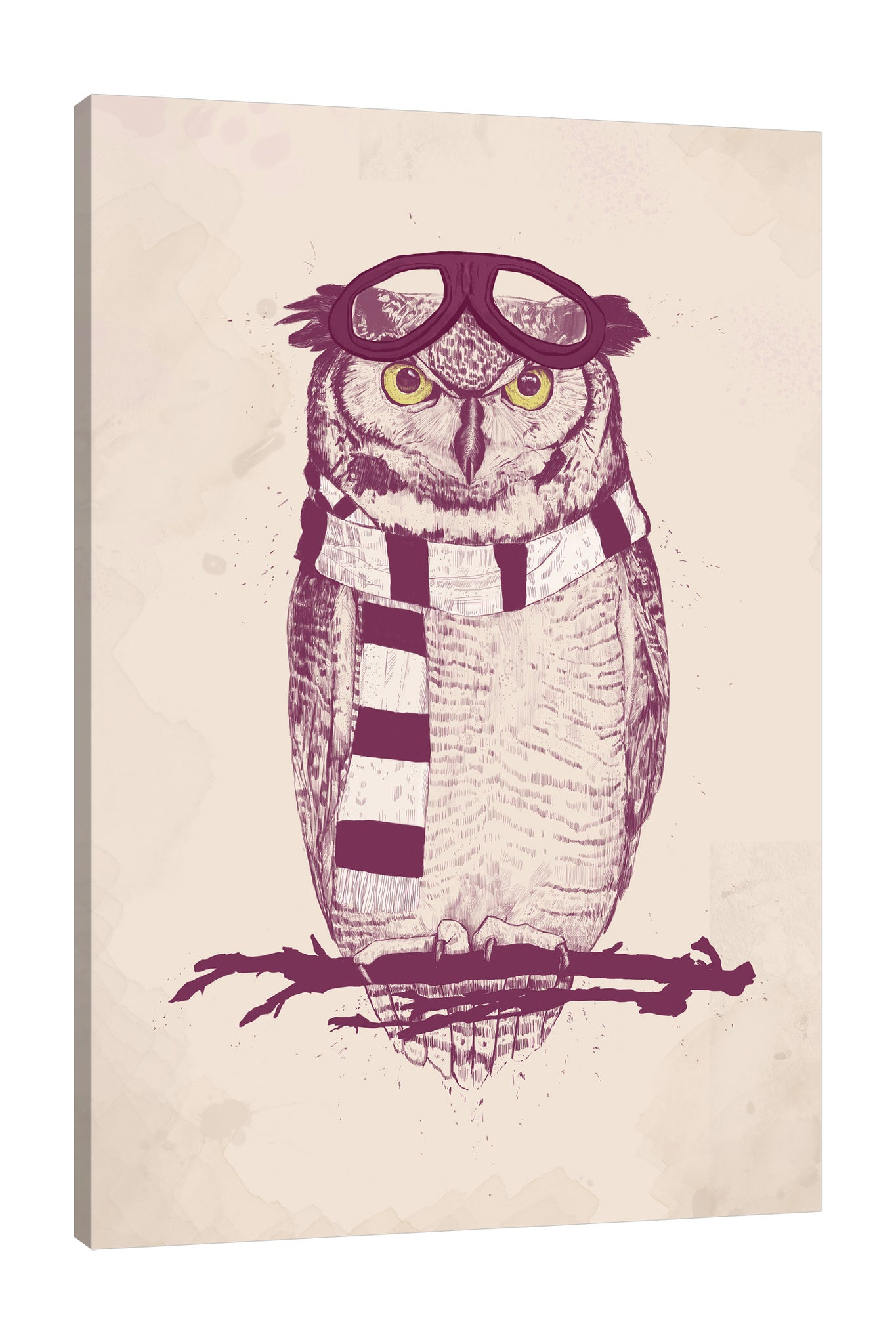 Balazs-Solti,Modern & Contemporary,Animals,animals,animal,owl,owls,aviator,aviators,stripes,stripe,cream,beige,black,Mist Gray,White,Blue,Pale Green,Gray,Steel Blue