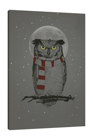 Balazs-Solti,Modern & Contemporary,Animals,animals,animal,gray,grey,black,moon,owl,owls,stars,star,moons,knits,knit,red,white,Charcoal Gray,White,Slate Gray,Black,Blue,Gray