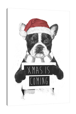 Balazs-Solti,Modern & Contemporary,Animals,animals,animal,dog,dogs,pug,pugs,xmas is coming,christmas,winter,santa hat,santa hats,hat,hats,red,words and phrases,Red,Mist Gray,Charcoal Gray