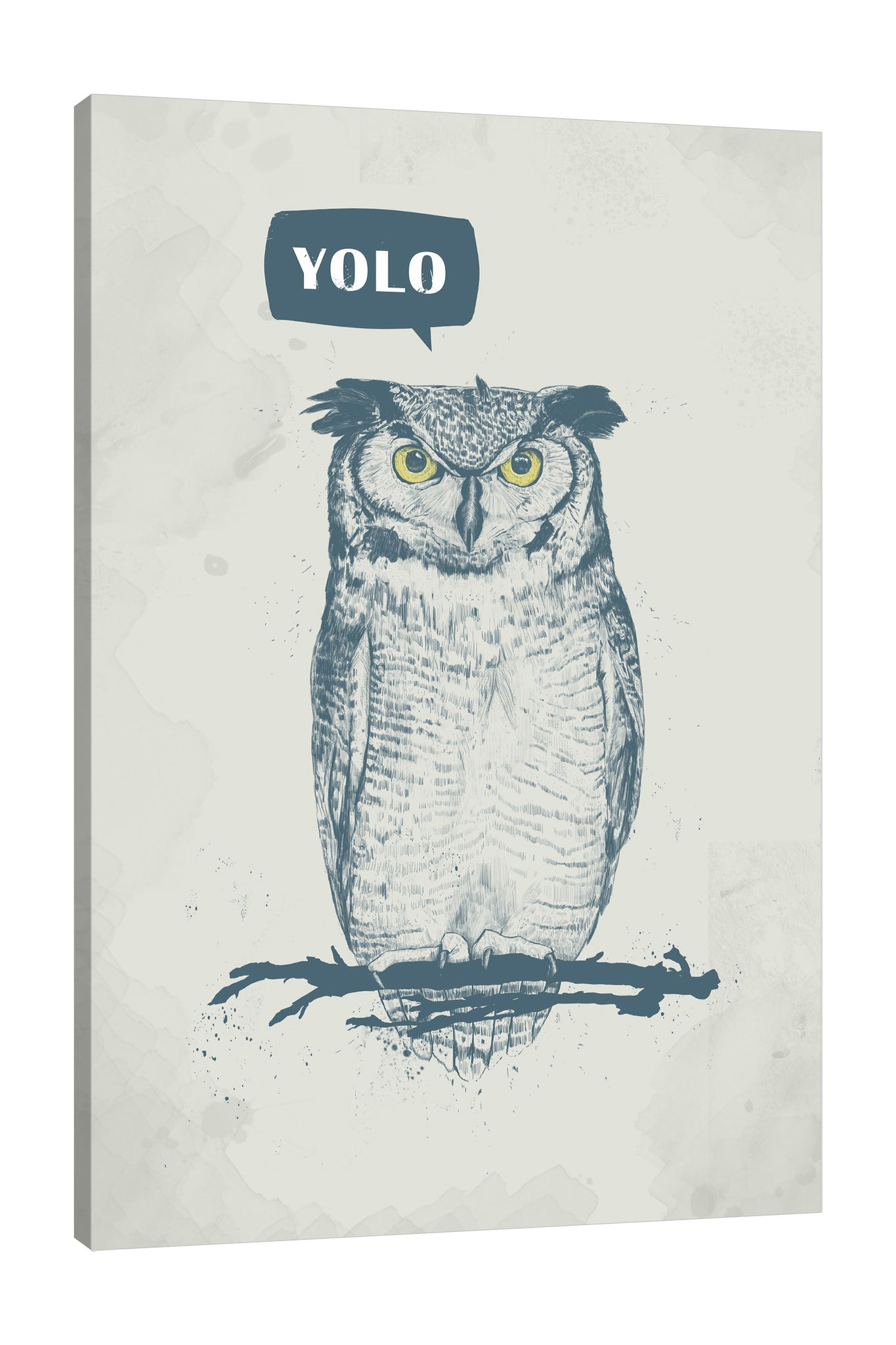 Balazs-Solti,Modern & Contemporary,Animals,animals,animal,owl,owls,yolo,words,blue,gray,grey,words and phrases,yellow,birds,bird,Rose Purple,Charcoal Gray,Red,Purple,Rose Orange,White,Gray