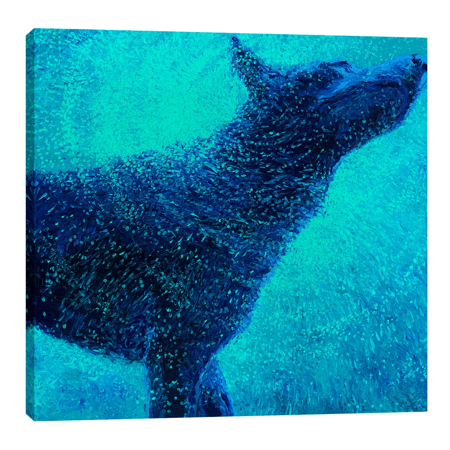 Iris-Scott,Modern & Contemporary,Animals,animals,animal,dogs,dog,wagging,shaking,water drops,blue,splatter,