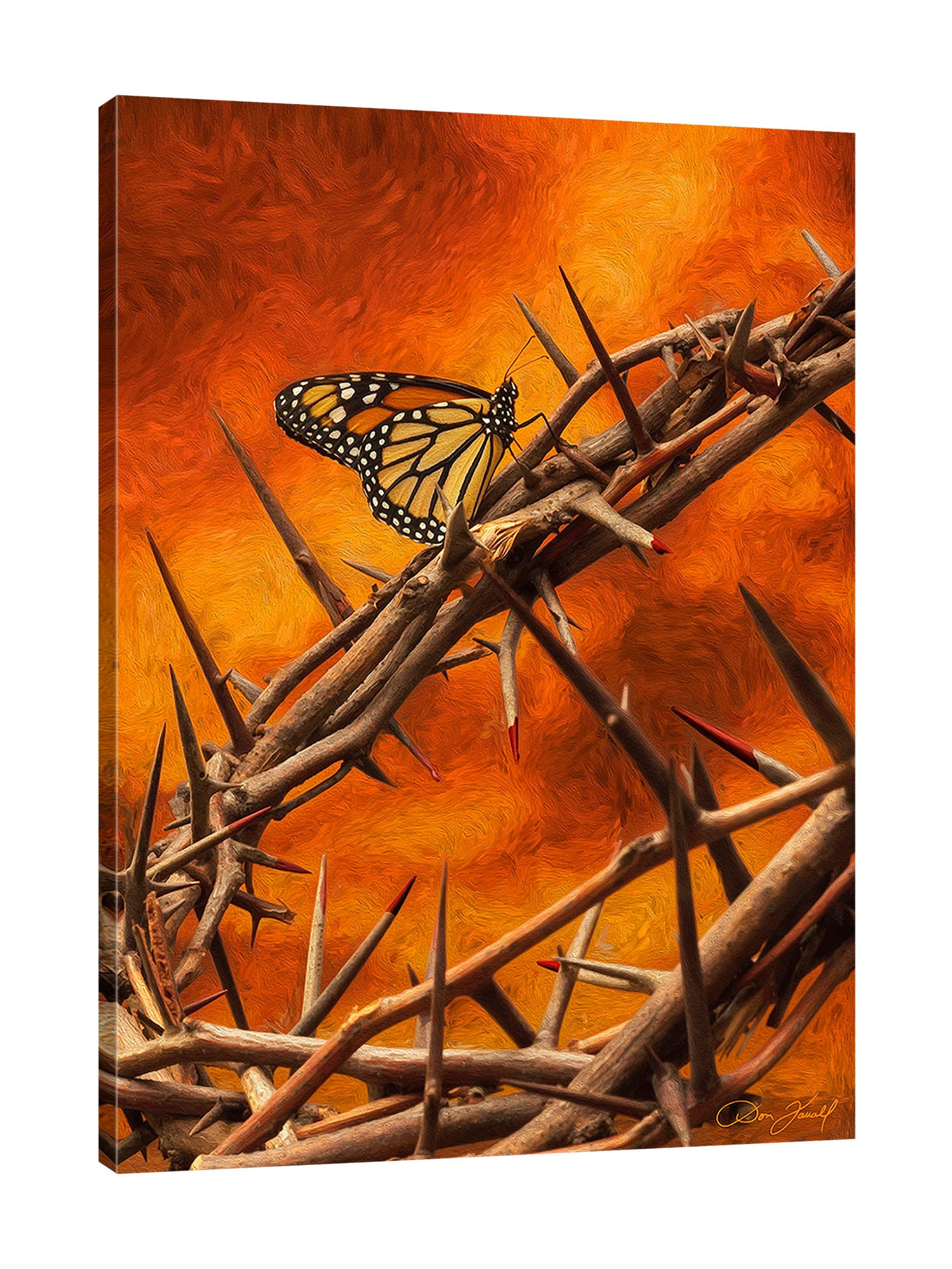 Don-Farrall,Modern & Contemporary,Animals,butterfly,insects,butterflies,branches,thorns,swirls,Red,Gray,Purple,Lavender Purple,Mist Gray,Black,Blue