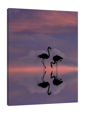 Dominic-Liam,Modern & Contemporary,Animals,silhoutte,flamingo,skies,clouds,Charcoal Gray,Red,Purple,Lime Green,Baby Blue,Black,Blue