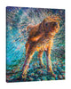 Iris-Scott,Modern & Contemporary,Animals,animals,dogs,wagging,threads,