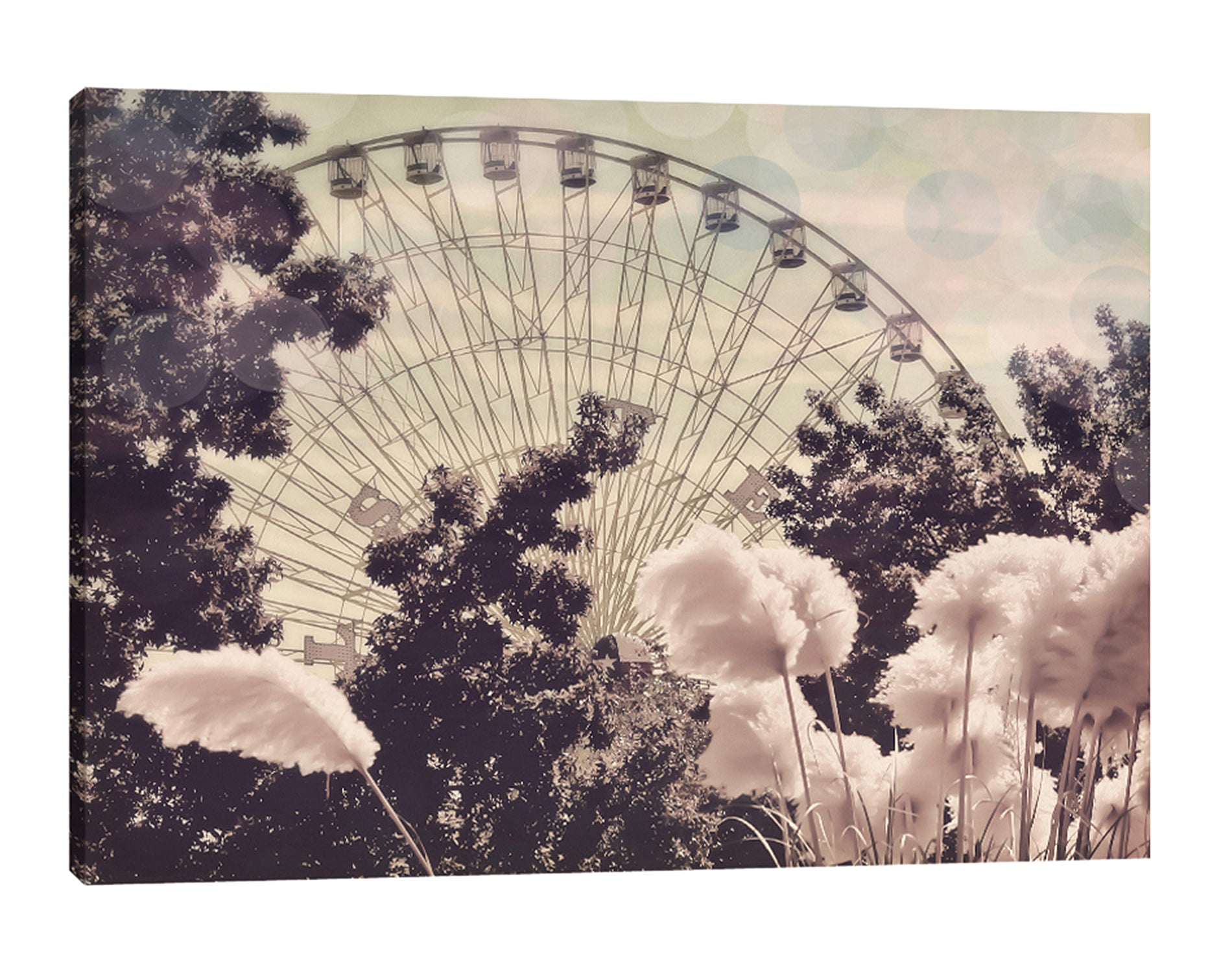Ashley-Davis,Modern & Contemporary,Entertainment,Floral & Botanical,ferris wheel,carnival,carnival rides,trees,tree,feathers,skies,clouds,Charcoal Gray,Black,Mint Green,White,Gray