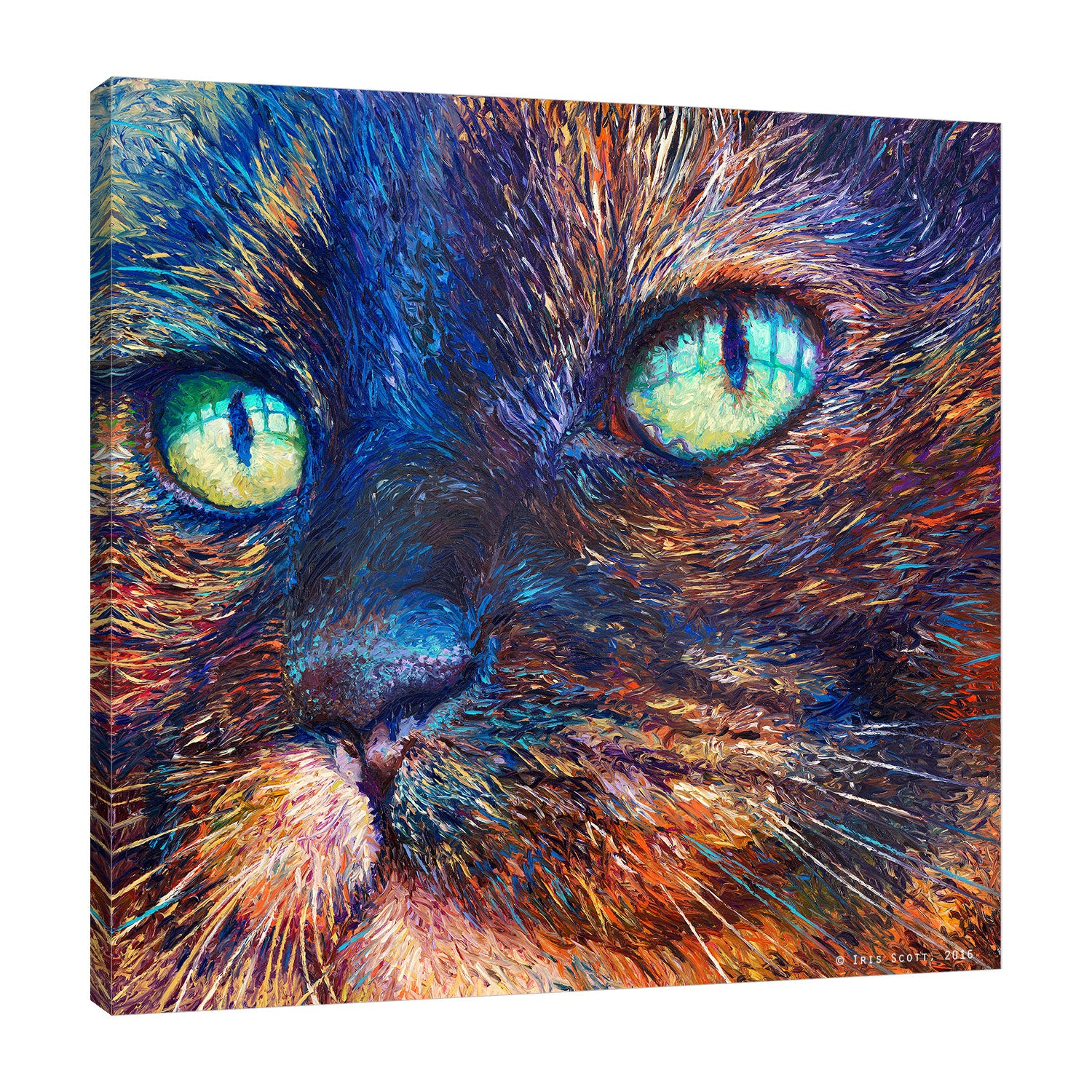 Iris-Scott,Modern & Contemporary,Animals,impressionism,animals,cats.close ups,whiskers,