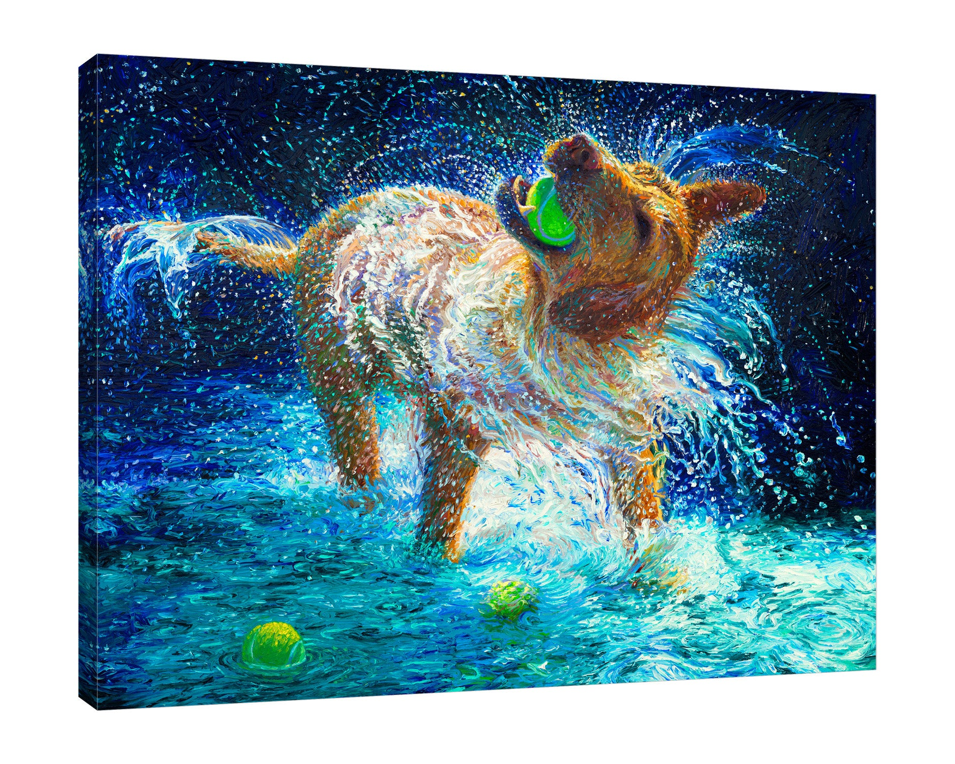 Iris-Scott,Modern & Contemporary,Animals,animals,dogs,splatters,water,playing,balls,