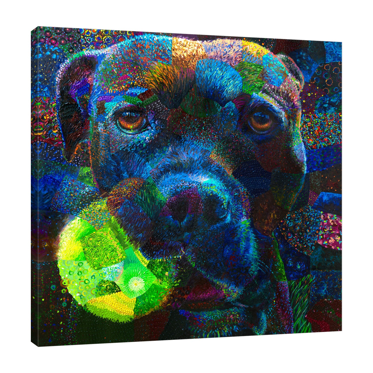 Iris-Scott,Modern & Contemporary,Animals,dogs,animals,tennis ball,balls,