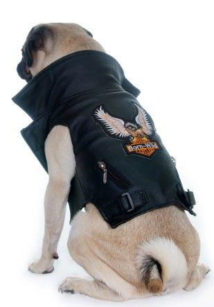 Pet Leather Biker Jacket-Pet-Vintage Rockstar