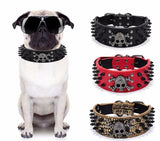 Skull Dog Collar-Pet-Vintage Rockstar
