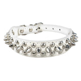 Studded Pet Collar-Pet-Vintage Rockstar