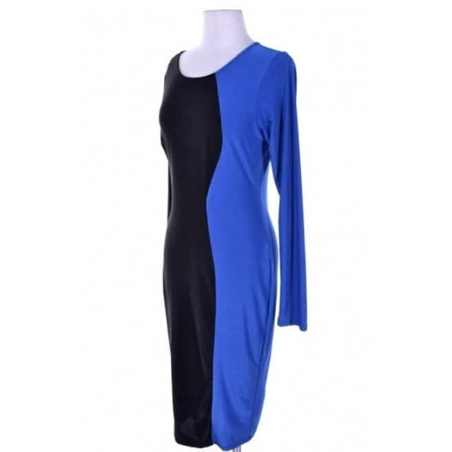 Color Block Bodycon Dress (Plus Size)